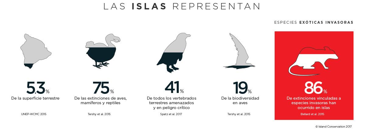 Island Conservation Infografía porque las islas son importantes Pingüino de Humboldt