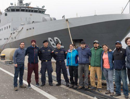 Armada de Chile colabora con ONG Internacional para proteger especies en peligro de extinción
