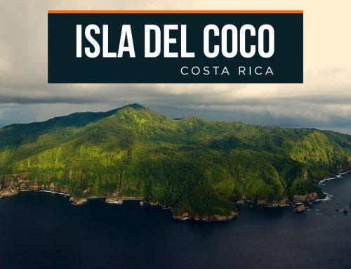 Alianza Busca la Restauración Ecológica de Isla del Coco