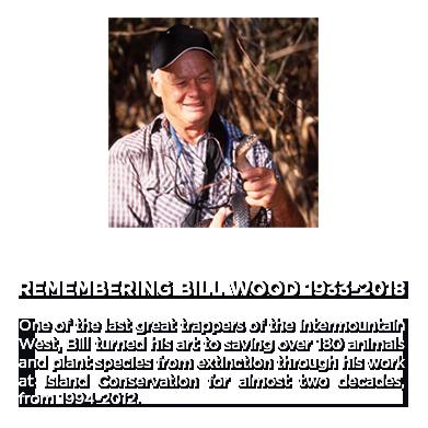 Bill Wood Island Conservation