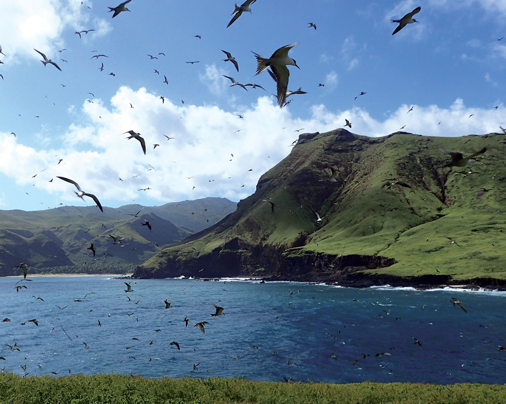 marquesas islands conservation