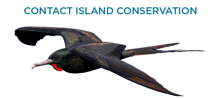 Island-conservation-contact-us-frigate-2