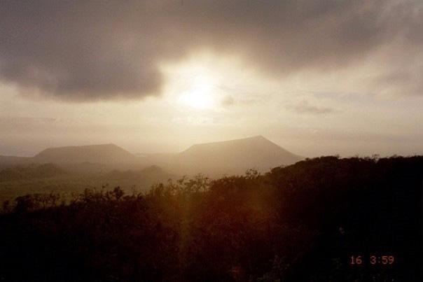 Island-conservation-chad-hanson-galapagos-3