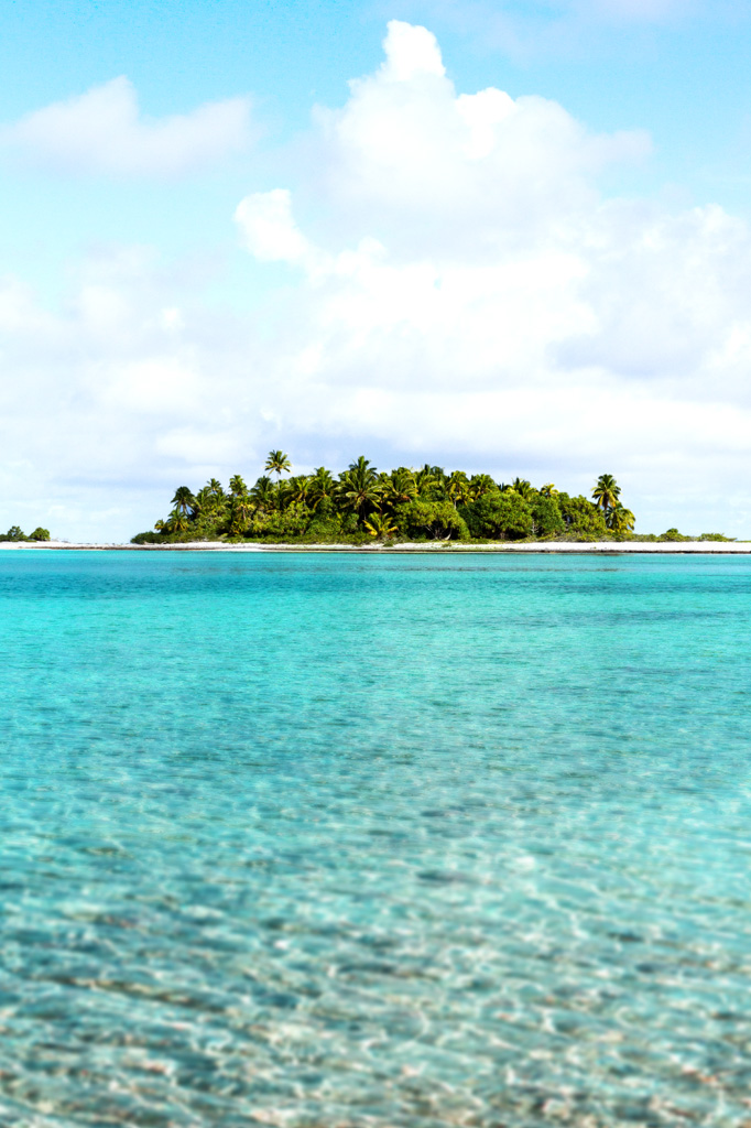 Island-conservation-acteon-gambier-Tommy-hall-_0000_Layer-2