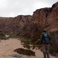 Island-Conservation-San-Nicolas-Species_People_Landscape_work