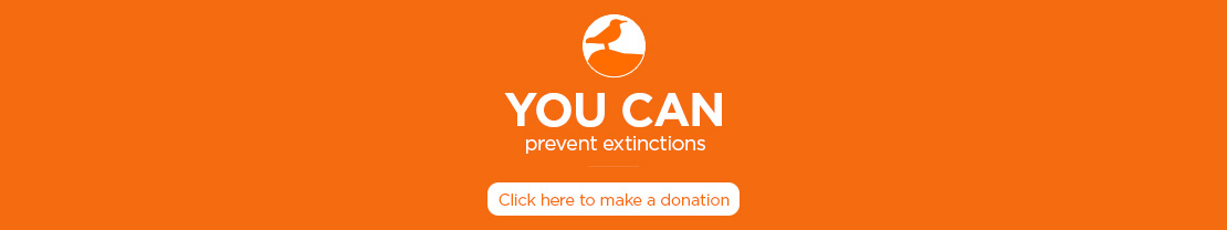 Island-conservation-donate-button-footer