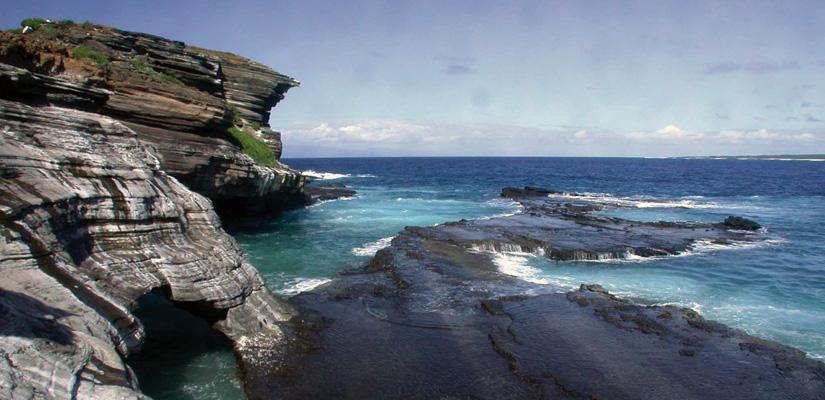 Main-big image-Lehua-Island-Conservation