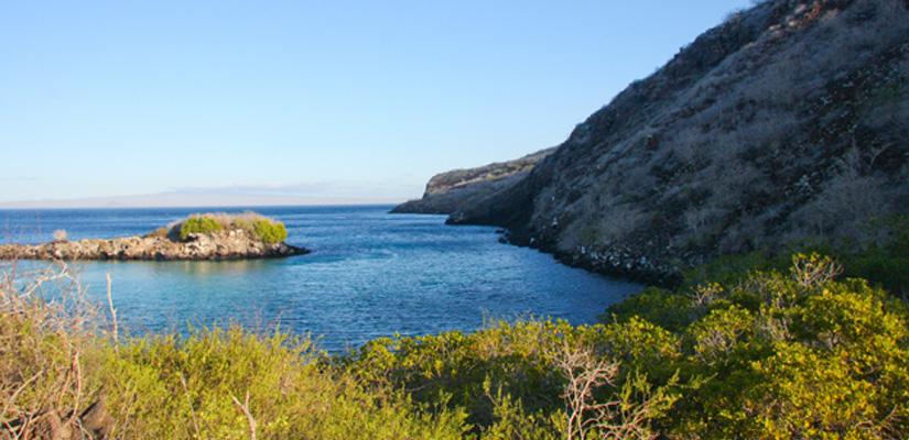 Main-big image-Pinzon-Island-Conservation