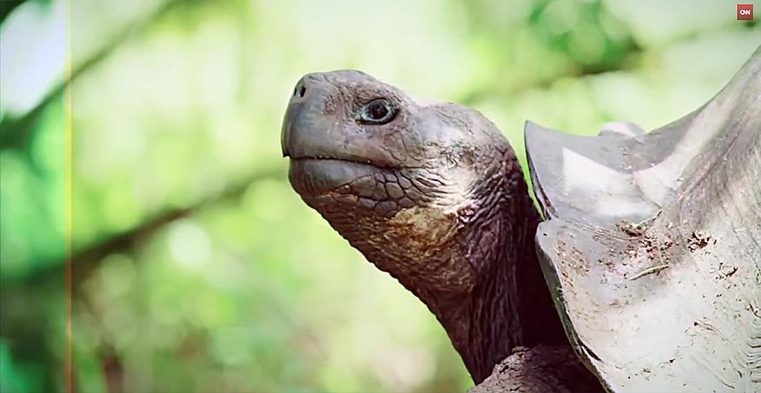 island-conservation-karl-campbell-cnn-bill-weir-the-wonder-list-8