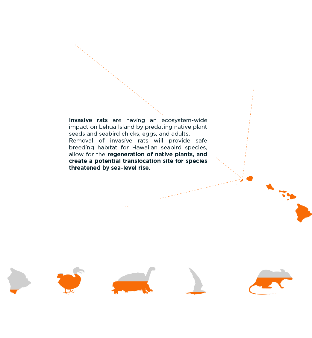 Lehua island Hawaii project infographic
