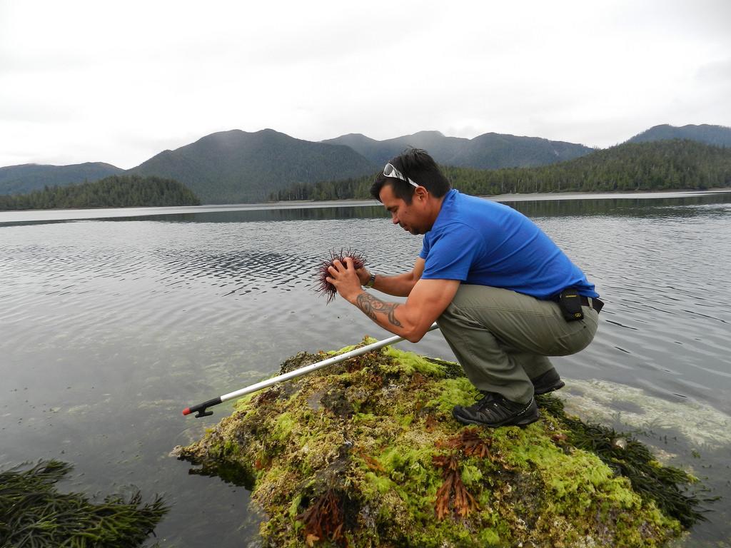 island-conservation-science-arichika-island-haida-gwaii-british-columbia-canada- (7)