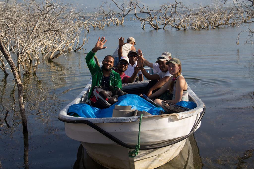 island-conservation-science-cabritos-island-dominican-republic- (3)
