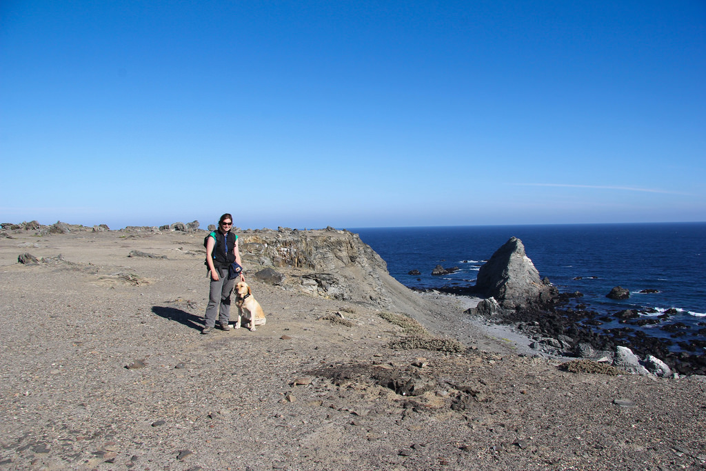 island-conservation-science-choros-island-chile- (16)