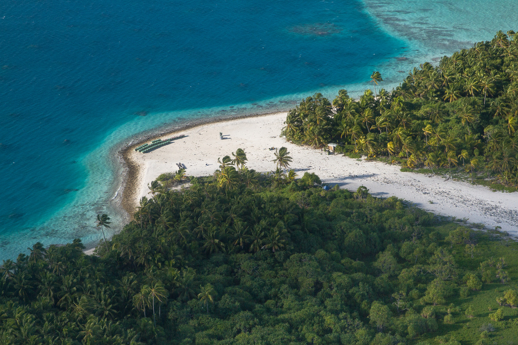 island-conservation-science-french-polynesia-acteon-gambier-atoll- (13)