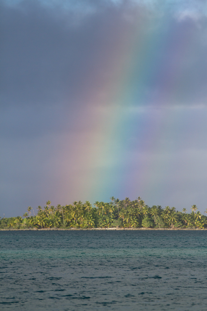 island-conservation-science-french-polynesia-acteon-gambier-atoll- (15)