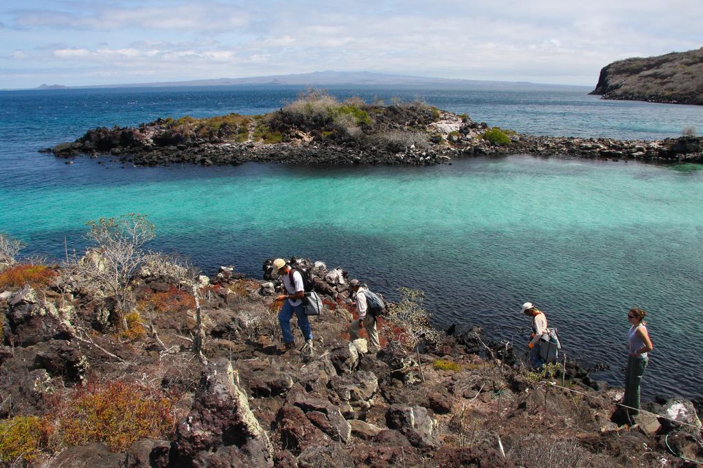 island-conservation-science-galapagos-pinzon-ecuador- (17)