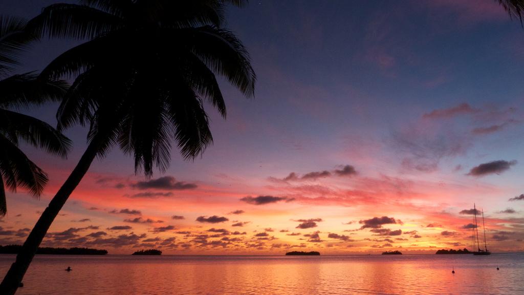 island-conservation-science-palmyra-atoll-line-islands-usa-photography- (19)