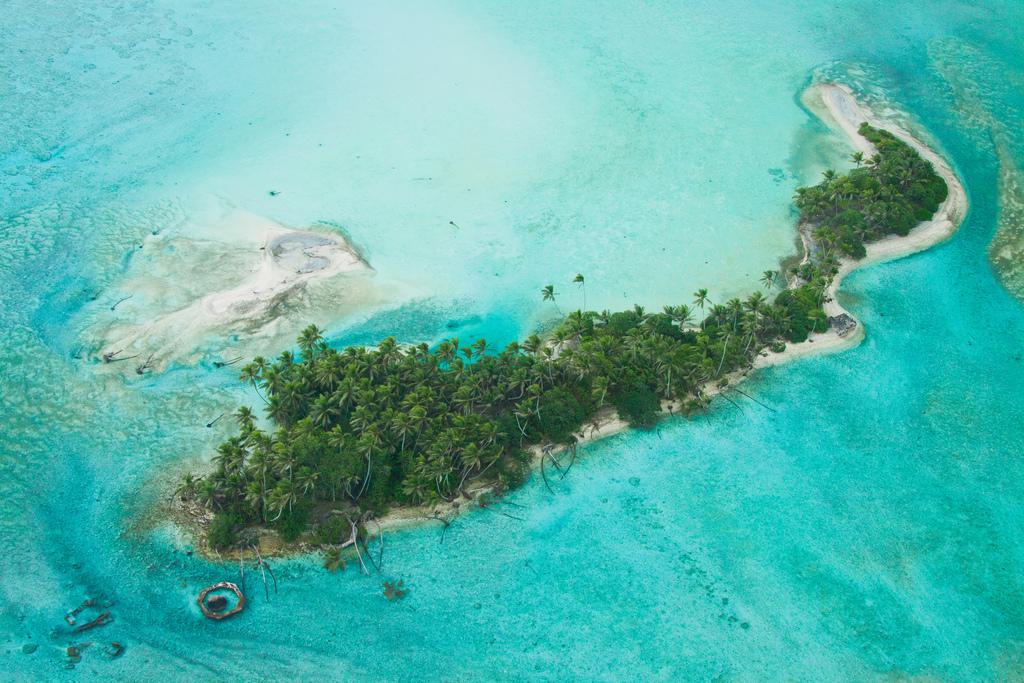 island-conservation-science-palmyra-atoll-line-islands-usa-photography- (2)