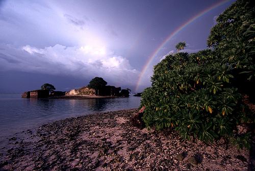 island-conservation-science-palmyra-atoll-line-islands-usa-photography- (21)