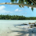 Island conservation science palmyra atoll line islands USA photography