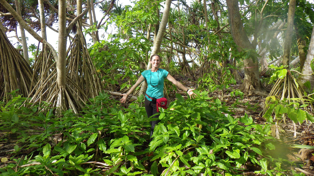 island-conservation-science-palmyra-atoll-line-islands-usa-photography- (8)