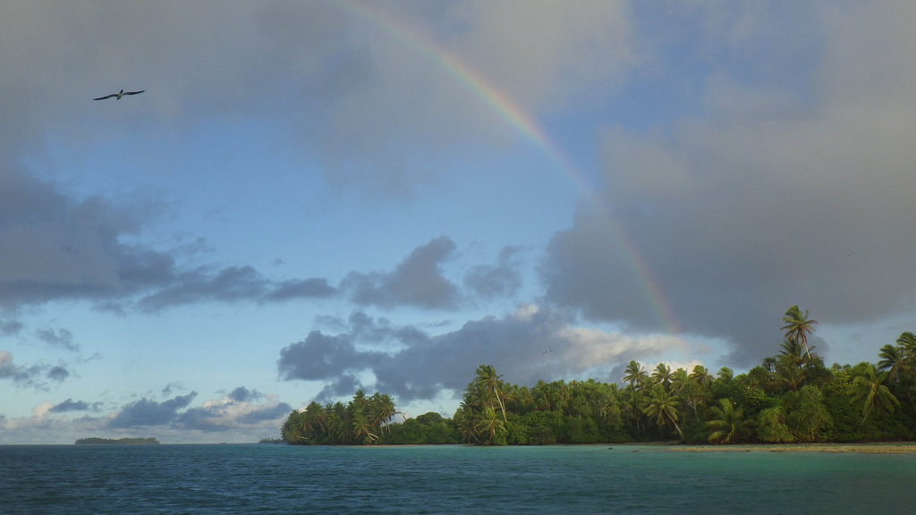 island-conservation-science-palmyra-atoll-line-islands-usa-photography- (9)