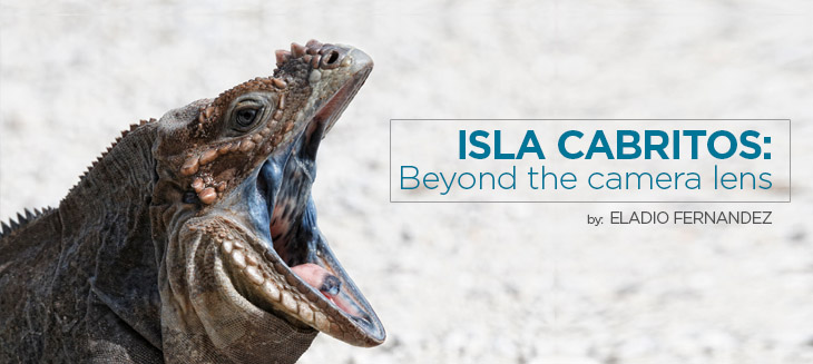 Eladio-Fernandez island conservation science cabritos island dominican republic iguana