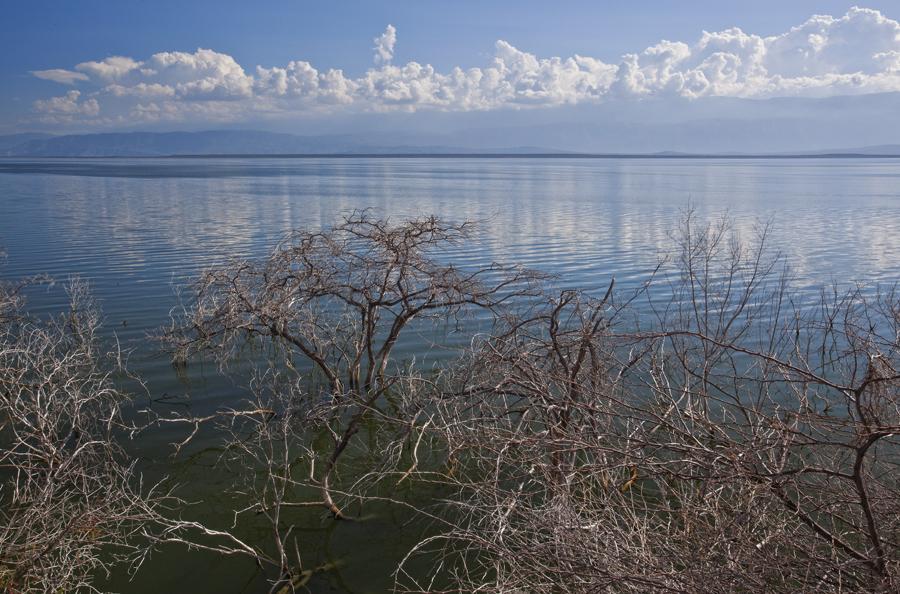 Lago Enriquillo 11.28.2014