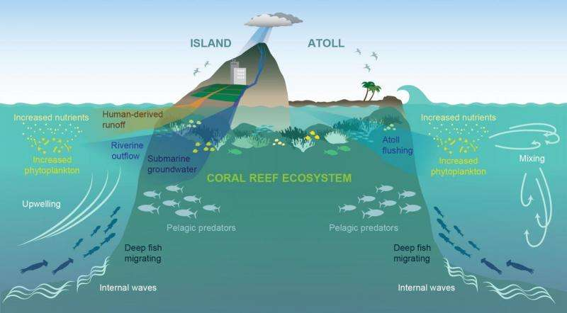 island-conservation-preventing-extinctions-ocean-oases-diagram