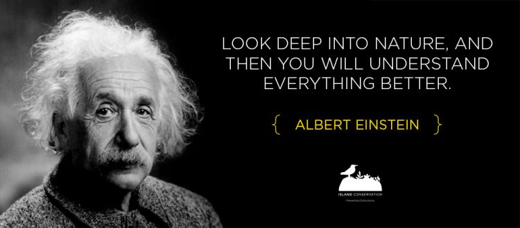 Island conservation science earth day albert einstein quote