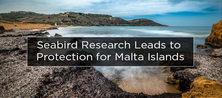 Island conservation science Malta