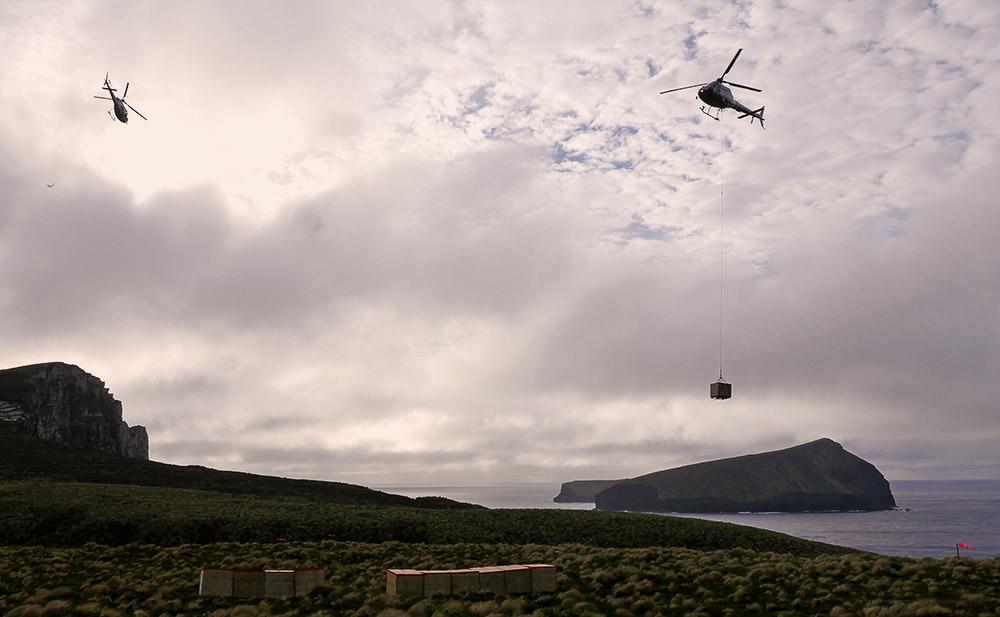 Island conservation science jason zito antipodes new zealand