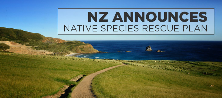 Island conservation NZ announces native species rescue plan