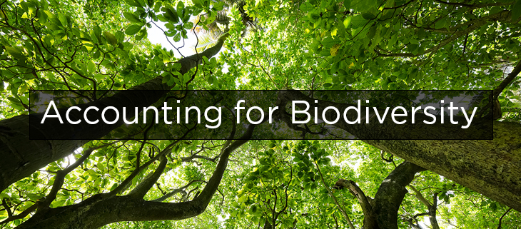 Island Conservation Accounting for Biodiversity