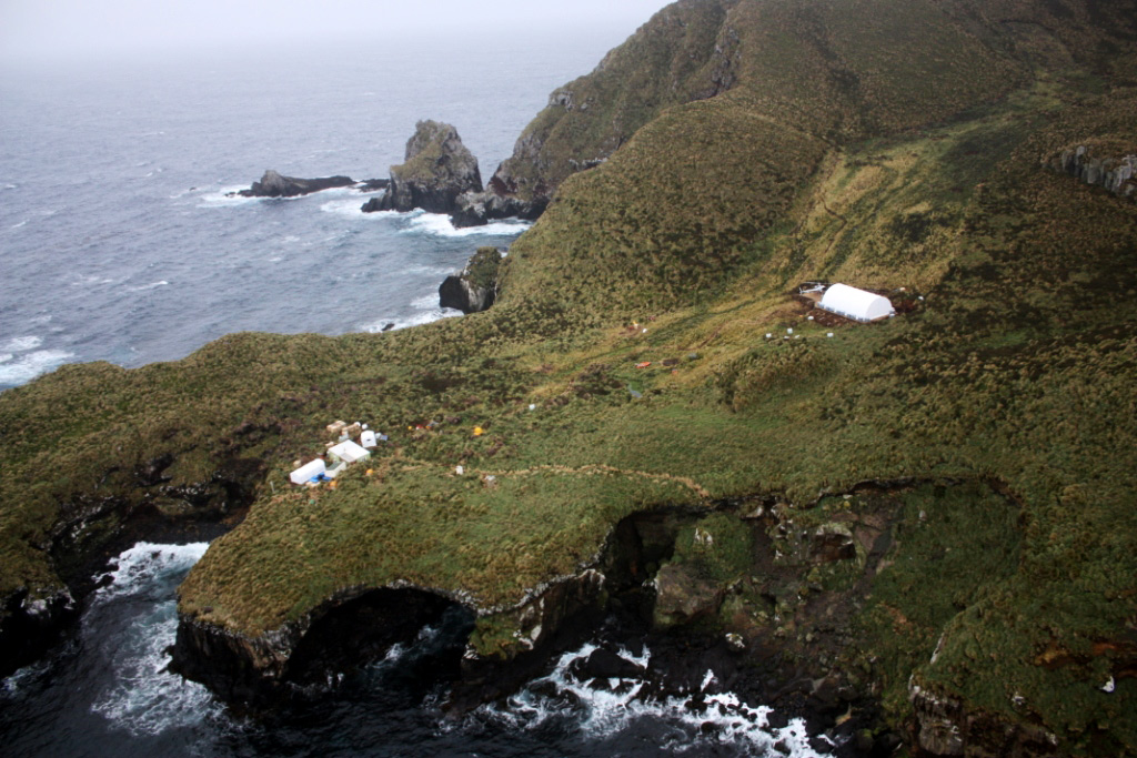 Island Conservation million dollar mouse, antipodes islands jose luis herrera new zealand aerial biodiversity hut