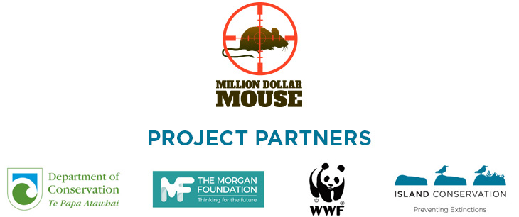 island-conservation-new-zealand-antipodes-islands-million-dollar-mouse-jose-luis-herrera-project-partners