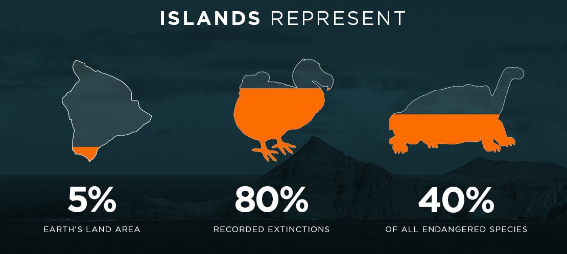 Island Conservation Islands Represent Infographic