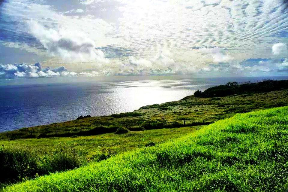 Island Conservation Easter Island Landscape
