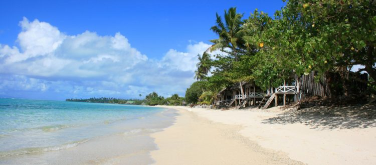 island conservation science samoa beach