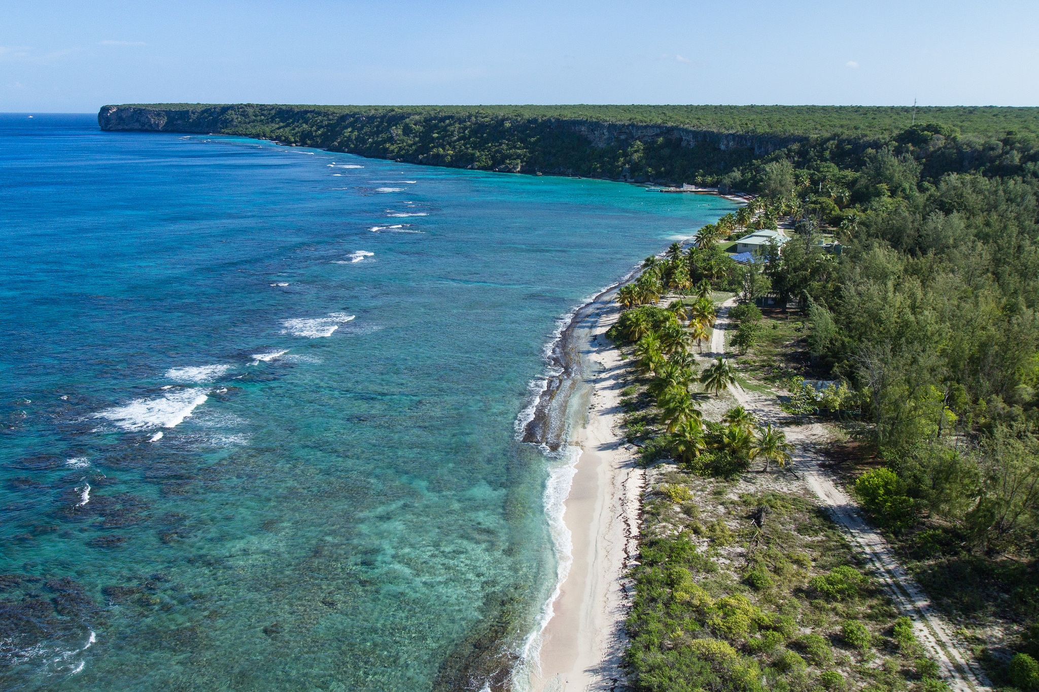 Island Conservation Mona Shoreline