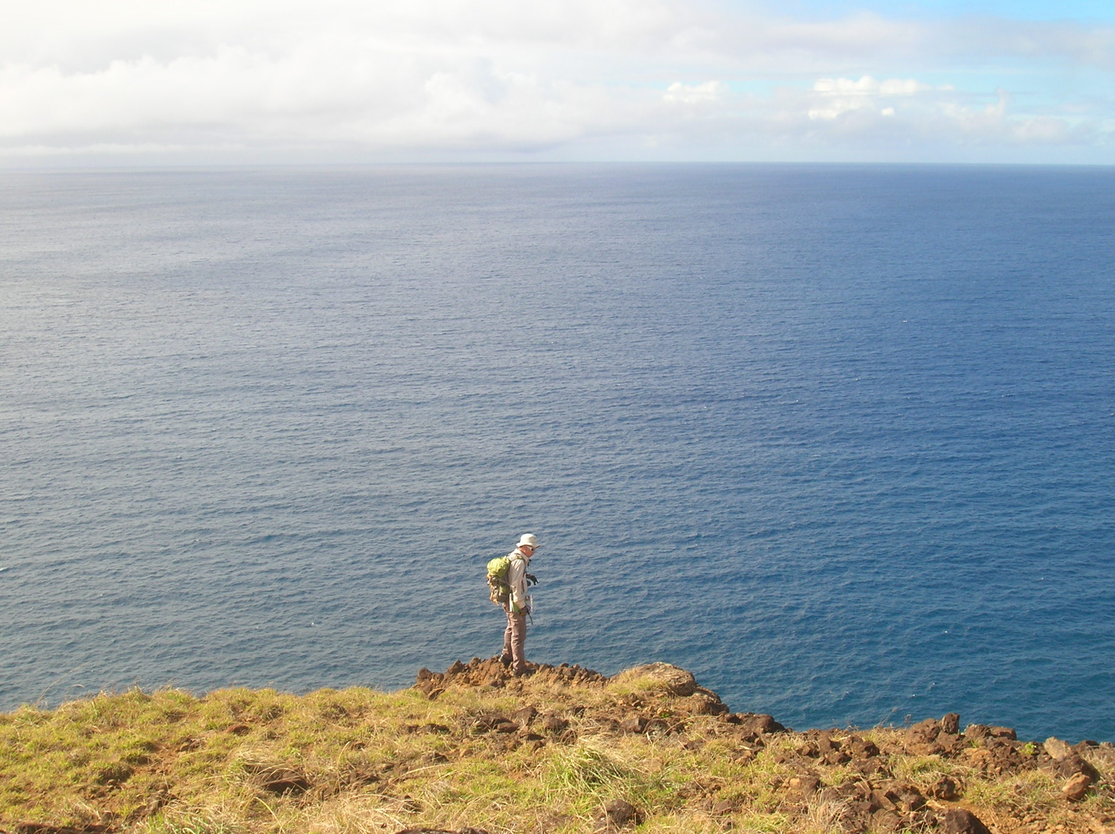 Island Conservation Rapa Nui