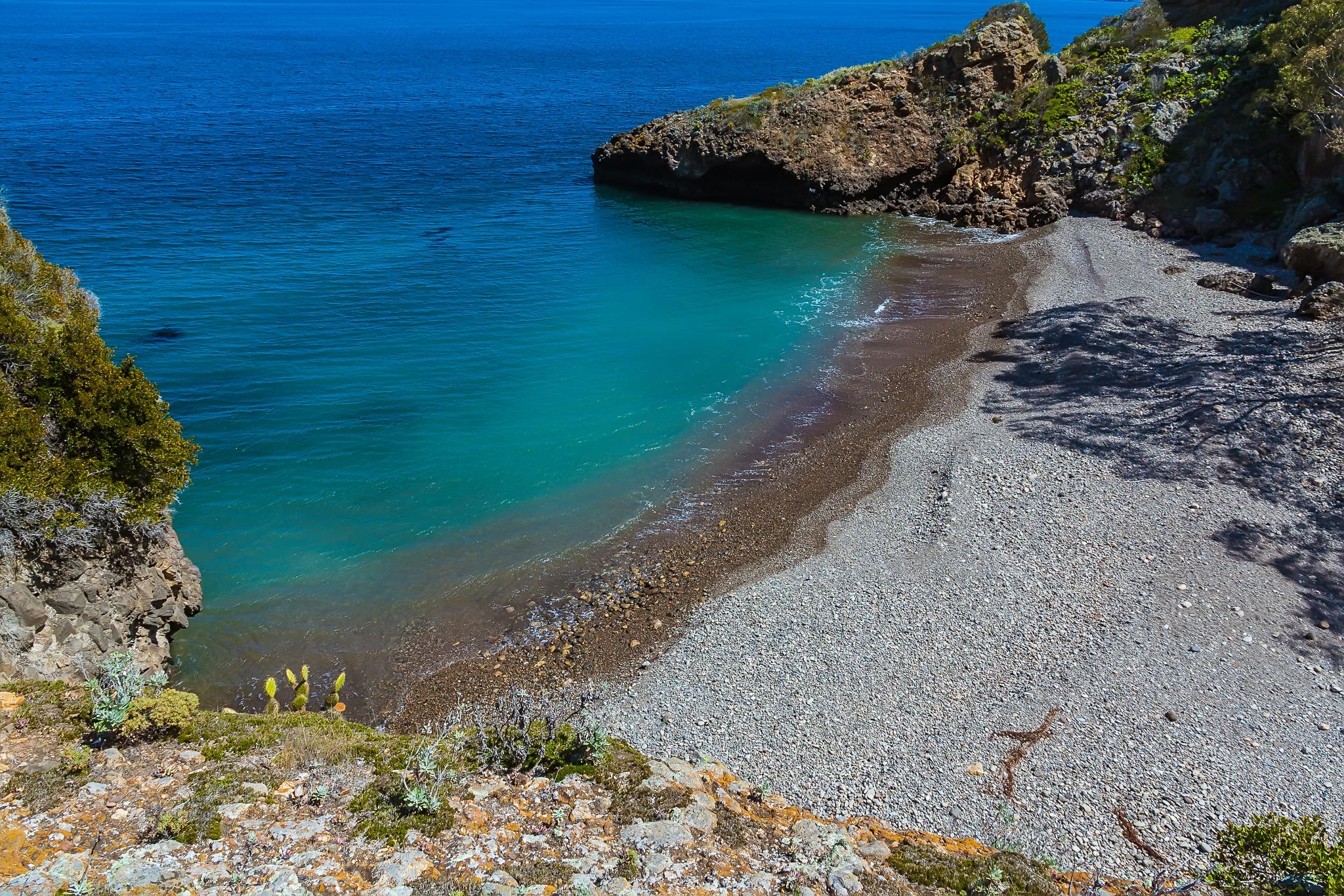 island conservation santa cruz island coast