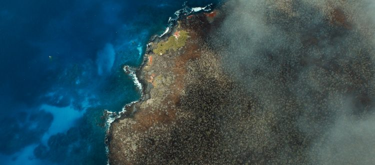 island conservation science aerial view galapagos