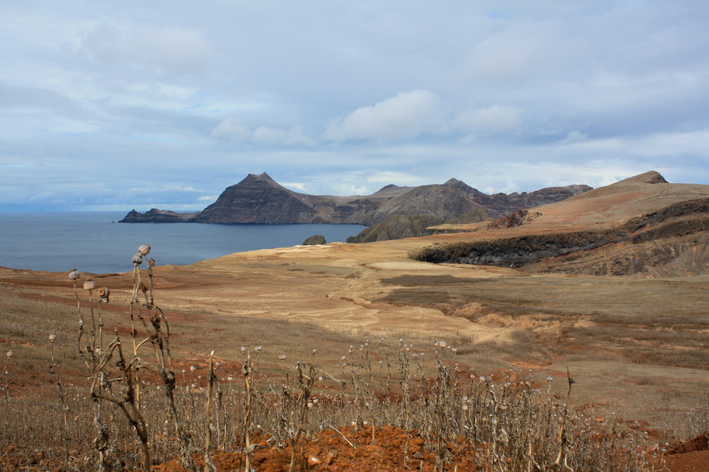 island conservation robinson crusoe island landscape