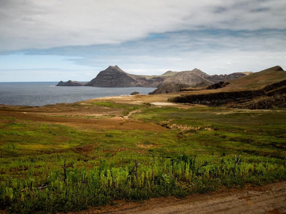 island conservation robinson crusoe island