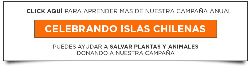 island-conservation-year-end-campaign-button-spanish