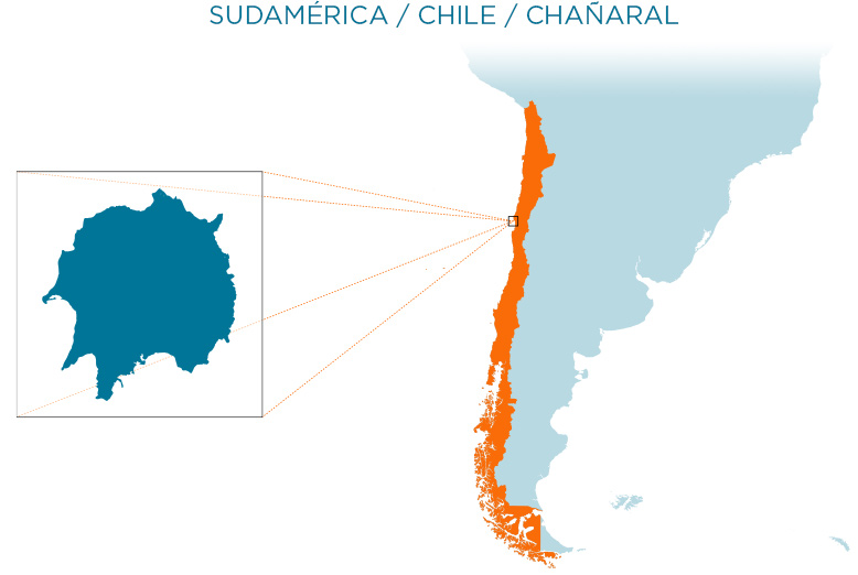 island-conservation-chanaral-map-es