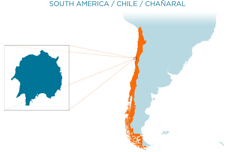 island-conservation-chanaral-map