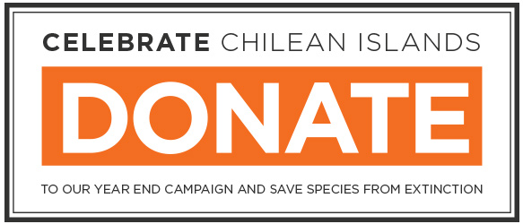 island-conservation-donate-now-button-chile-2016