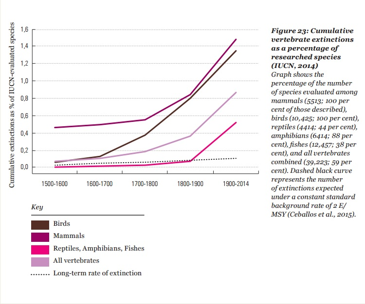 island conservation extinction graph